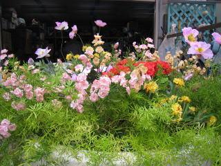 造花・造葉
